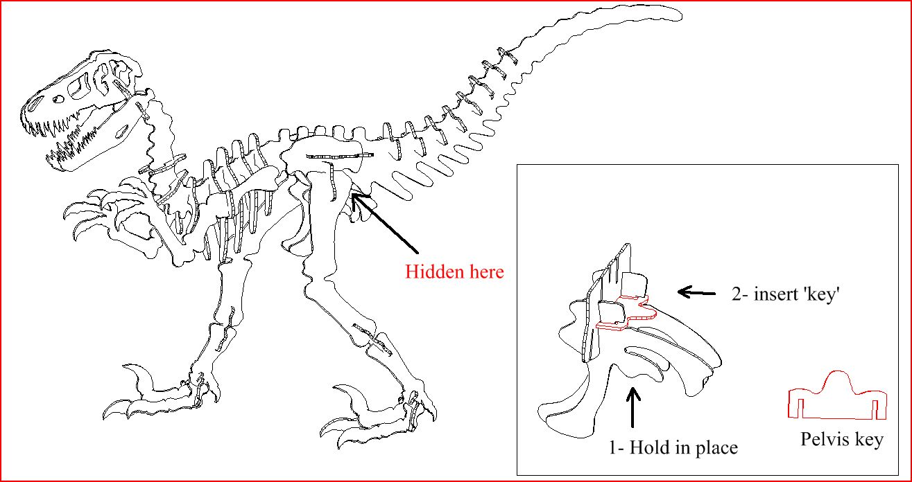 Dinosaur Puzzle Step By Snake Skeleton Diagram The Skull At Very